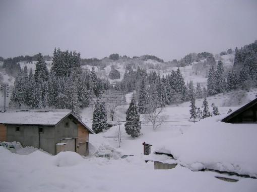 20080225-雪景色.jpg