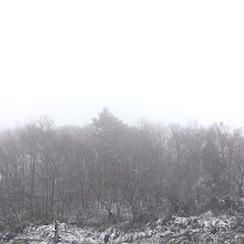 20161217-雪景色.JPG