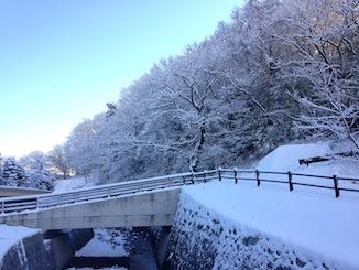20170113-雪景色2.JPG